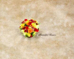 Beautiful Flowers. by PhysicalMagic