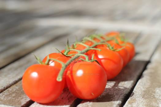 Hot fresh red Cherry
