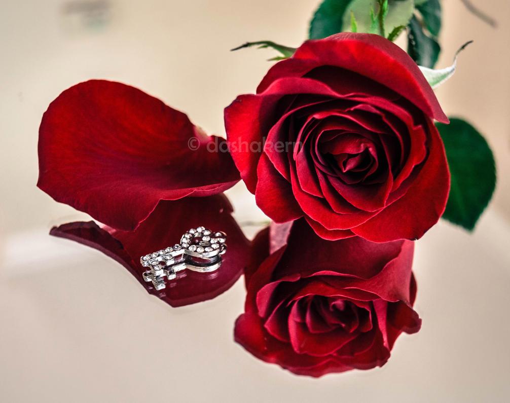 Romantic by dashakern