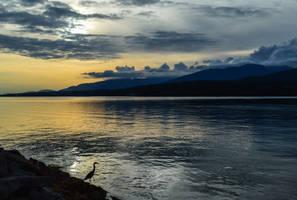 La solitude by dashakern
