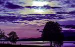 Purple evening by dashakern
