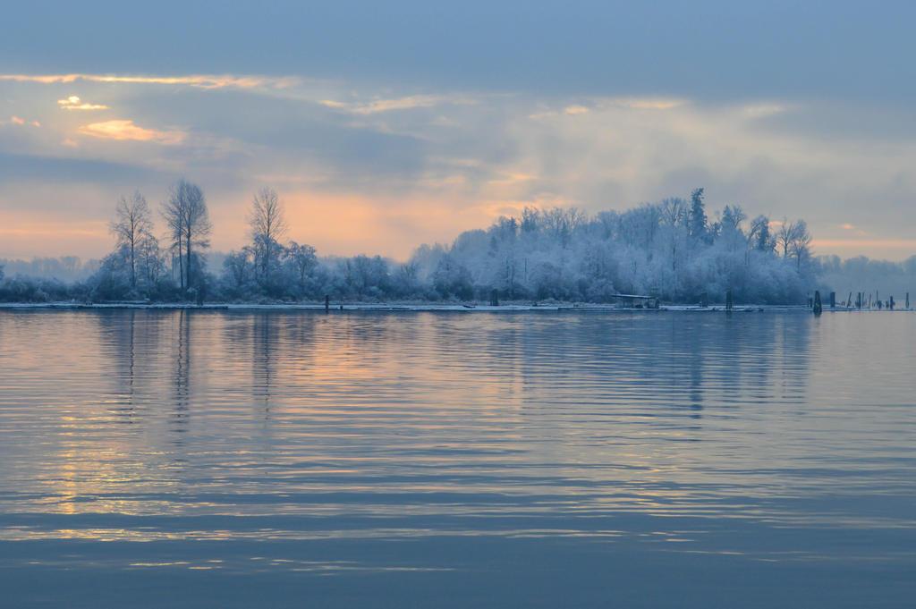 Winter in my heart by dashakern