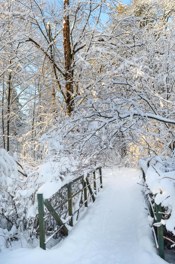 February by dashakern