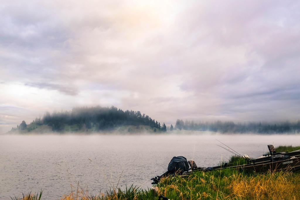 Foggy Morning by dashakern