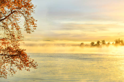 Waltz of the fog and autumn leaves