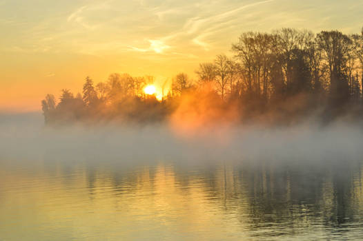Fog up the river