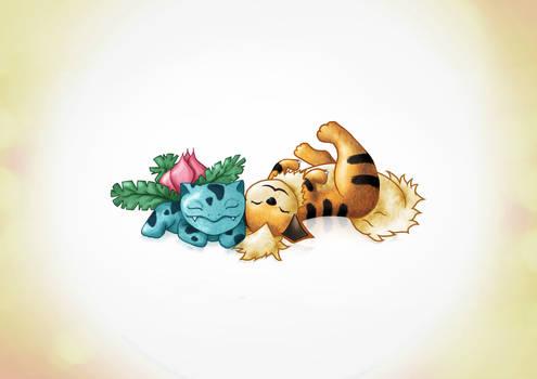 Sleepy Critters 3