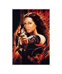 Katniss Recast - Catching Fire