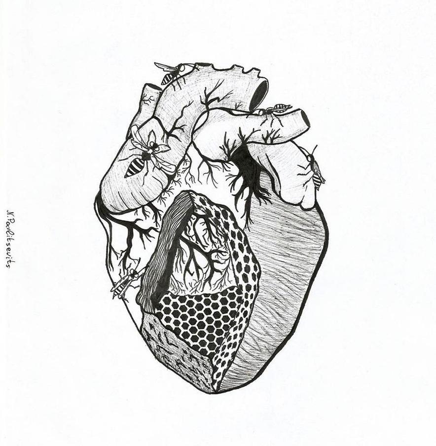 Hive Heart, Inktober 5 by Natasha-Pavlitsevits