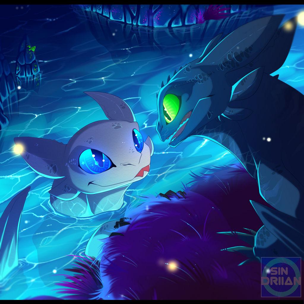 Toothless and the LightFury ~ by Sindriian