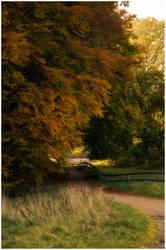Autumn by Dreammastr