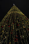 KL-Petronas Towers Christmas Tree