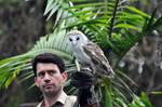 CWS-Barn Owl II
