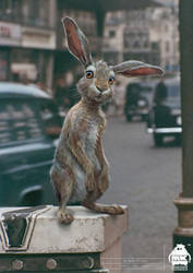 Christopher Robin: Rabbit Character Design by michaelkutsche