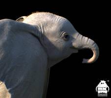 Dumbo: Character Design