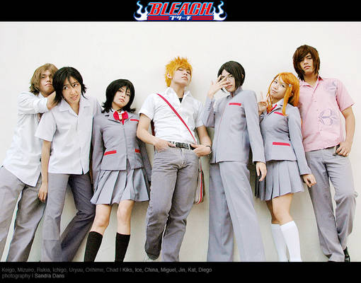Bleach: The Usual Suspects