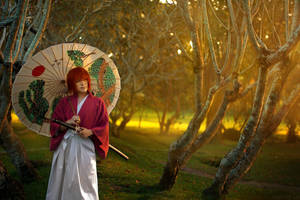 Rurouni Kenshin: Heart of the Sunrise
