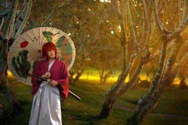 Rurouni Kenshin: Heart of the Sunrise
