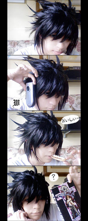 L's Hair
