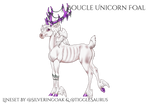 Q216 | Foal Design
