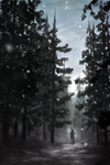 In the Pines