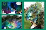 Peacock Mask Angles