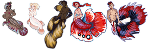 Mermay Betta Adopts! [1/5 OPEN!] by flyteck