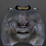 Uruk-hai heads: Sample head texture.