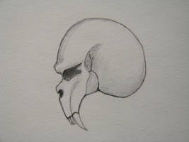 Skull by Oddboy7