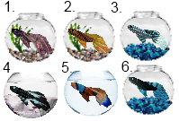 Pixel Guppy Adoptable Icons by Swaps-Adopts