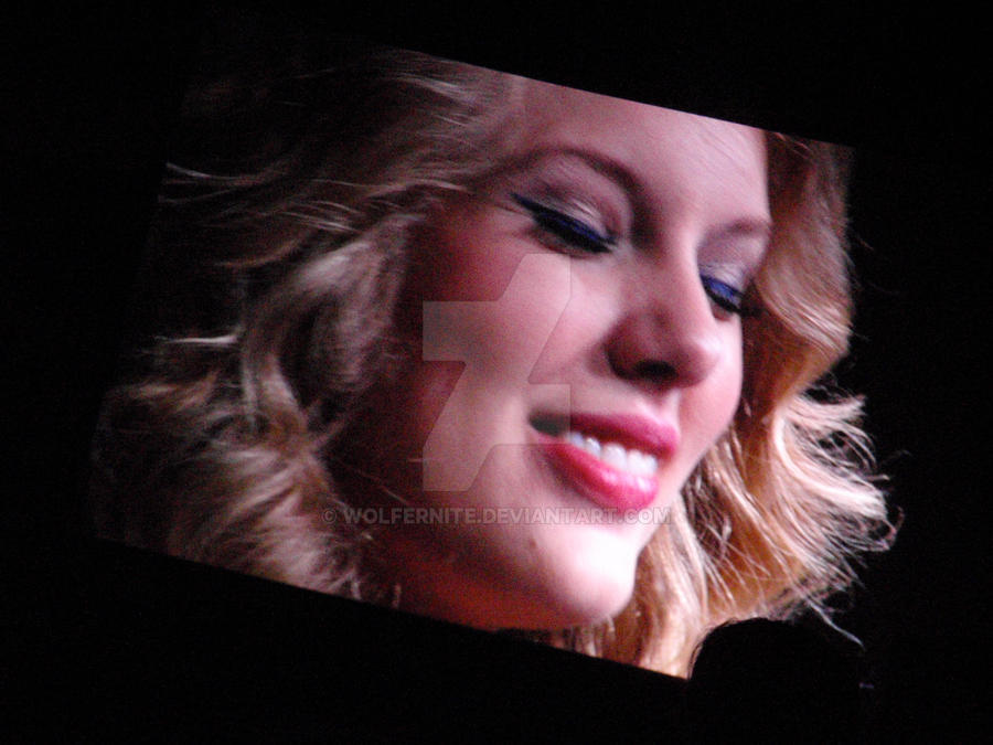 Taylor Swift Concert by Wolfernite