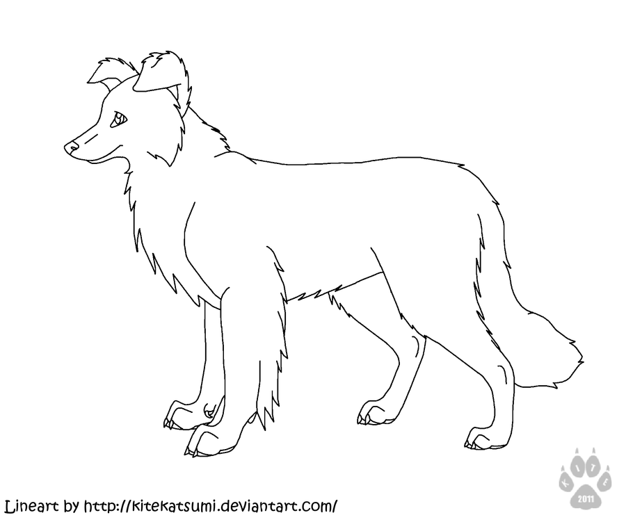 Someone free for border collie linearts by rhcp cream on for Border collie coloring pages