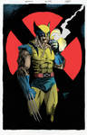 Wolverine Colorist Practice
