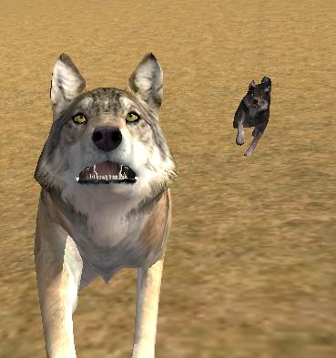 Gaaaaah by WolfQuestClub-PL