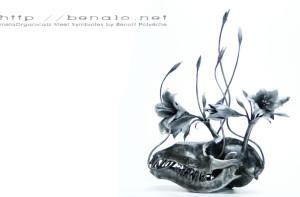 benalo's Profile Picture