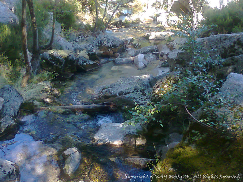 The Wild Nature and Me - Rivers - 2011-09-09.1 by Kay-March
