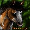 avvie for Waffs by Randomznez