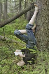 Forest reader by ohlopkov