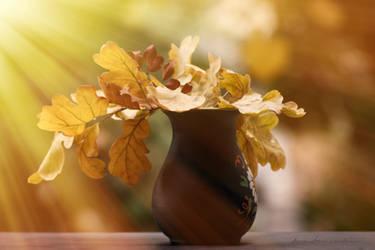 Autumn at my window...