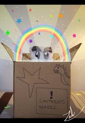 Fella's Wonderful Magical Box by ZBot9000