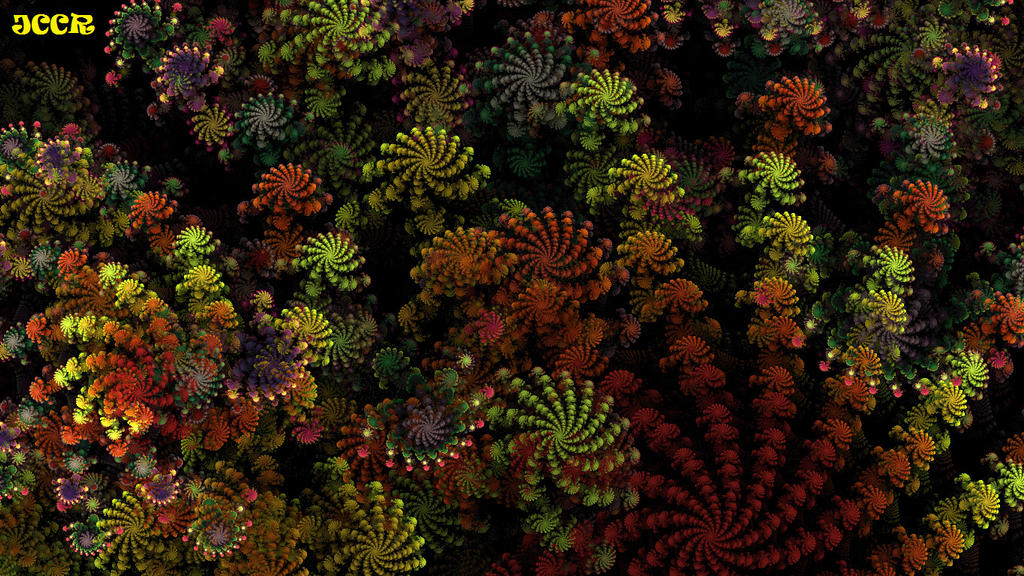 Latin Colours by jccrfractals