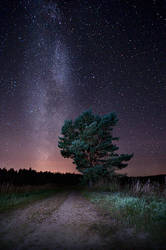 Milky Way by MikkoLagerstedt