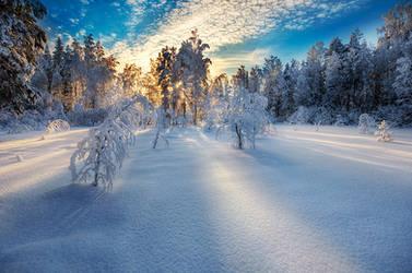 Winter Memories by MikkoLagerstedt