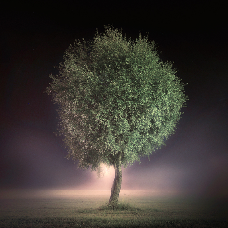 The Night Watch by MikkoLagerstedt
