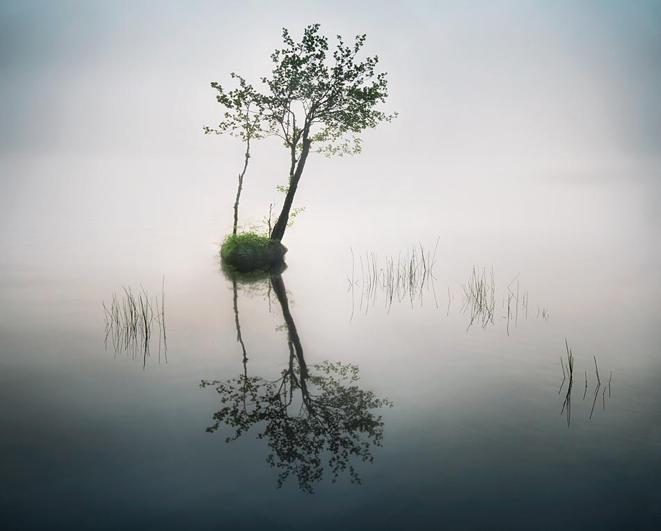 ....... by MikkoLagerstedt