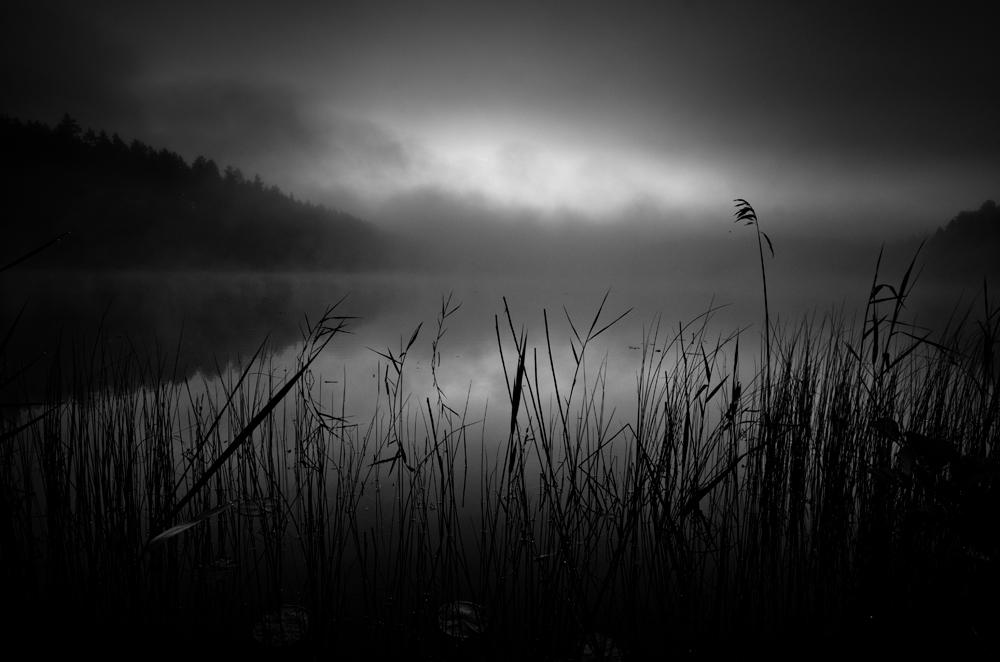 . by MikkoLagerstedt