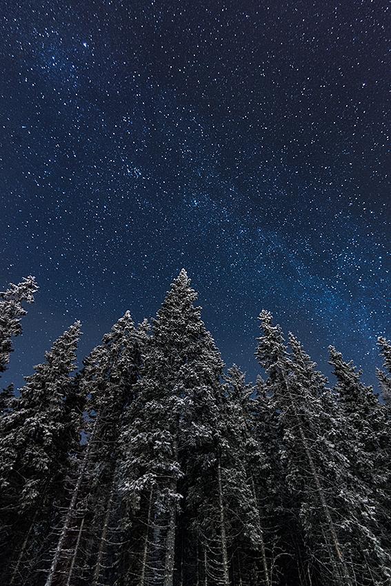 Moonlit by MikkoLagerstedt