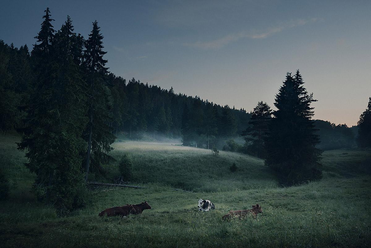 Summer Night in Finland by MikkoLagerstedt