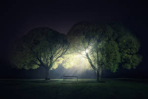 These Pieces Fit by MikkoLagerstedt