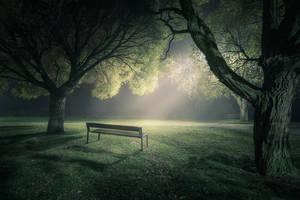In The Spotlight by MikkoLagerstedt